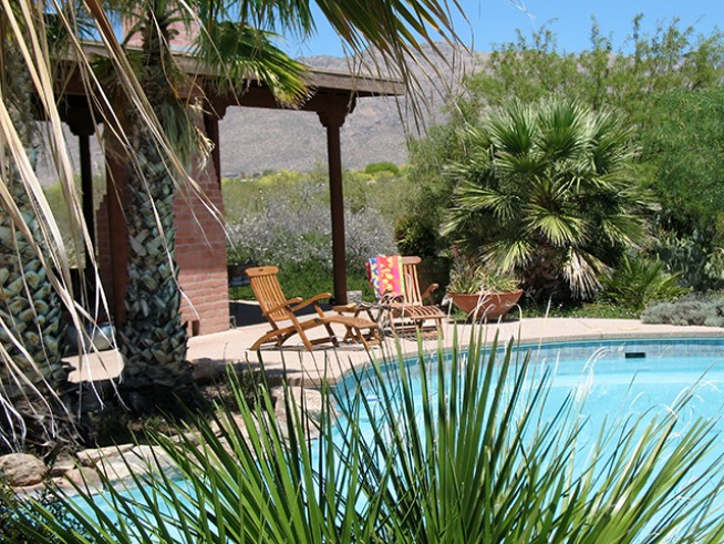 cactus cove bed and breakfast inn - swimming pool